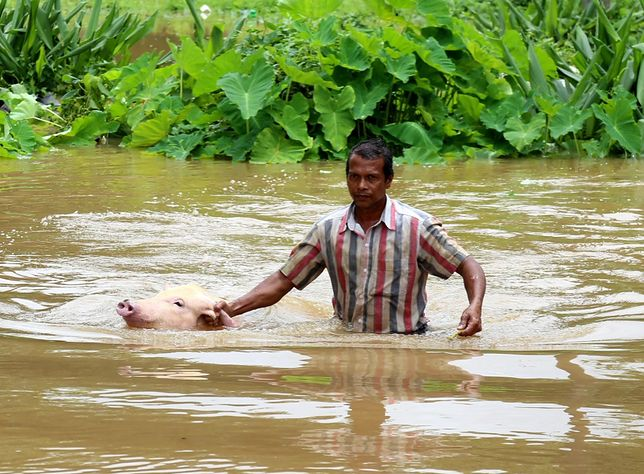 Tragiczna powódź w południowych Indiach. Nie żyją setki ludzi, a setki tysięcy potrzebuje pomocy