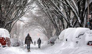 Śnieżyce w USA. Spadło ponad 60 cm śniegu