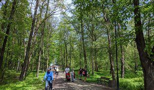 Park w Brzeźnie to popularne miejsce wśród turystów i mieszkańców Gdańska