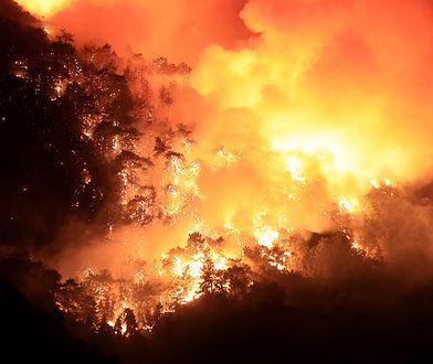 Pożary w Turcji. Turyści ewakuowani. Są ofiary