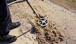 Badania nie wymagały wbijania łopaty w ziemię (zdjęcie ilustracyjne)
