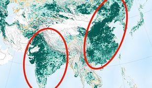 Ziemia jest bardziej zielona - szczególnie na terenie dwóch państw