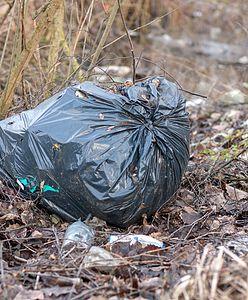 Ktoś wyrzucił śmieci w lesie. Leśnicy znaleźli w nich liścik