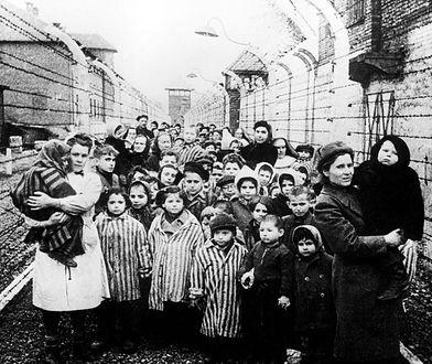 Centrum Szymona Wiesenthala ujawnia powojenny raport Departamentu Stanu USA o losach Żydów w Polsce. Zdjęcie przedstawia wyzwolenie obozu Auschwitz-Birkenau