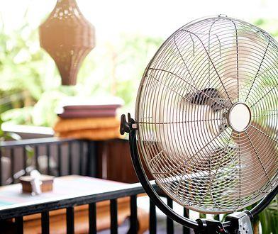 Letnie ochłodzenie i praktyczna ozdoba. Najlepsze wentylatory