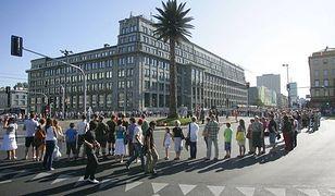 Słynna palma zniknie z ronda de Gaulle'a? Radni podjęli decyzję