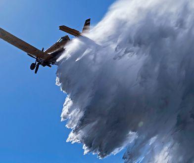 Płonie las pod Warszawą. Wysłano samolot gaśniczy