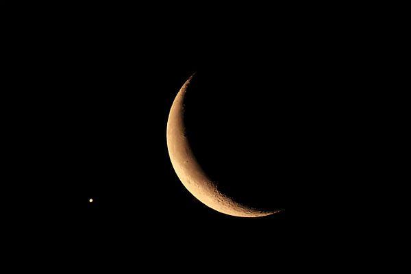 Astronom: Wenus, Księżyc i Regulus - razem