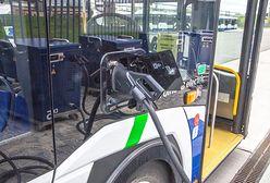 Elektromobilność – skuteczna walka z zanieczyszczeniem i hałasem