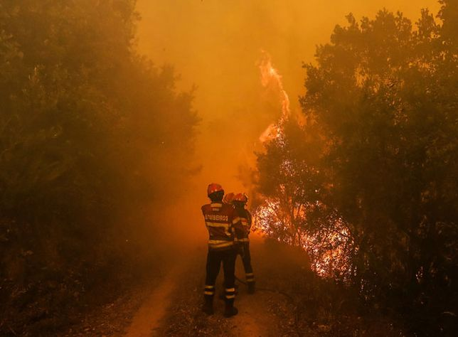 Portugalia: podpalenie przyczyną pożarów?