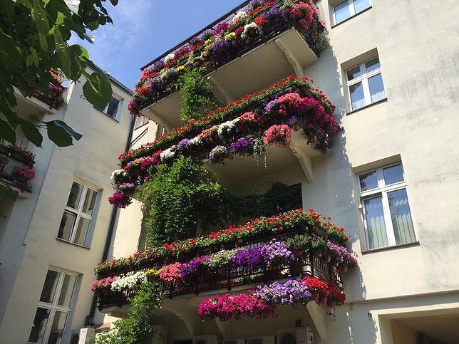Balkony przystrojone kwiatami