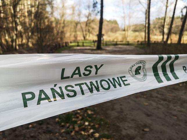 Od 1 do 20 kwietnia w polskich lasach doszło do 2 tys. pożarów.