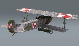 Tak ma wyglądać jeden z odtworzonych samolotów.