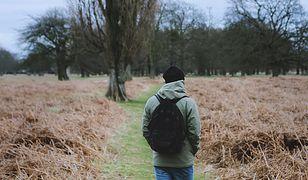 W kwestii zakazów wstępu do lasów rząd wprowadził niebywały chaos.