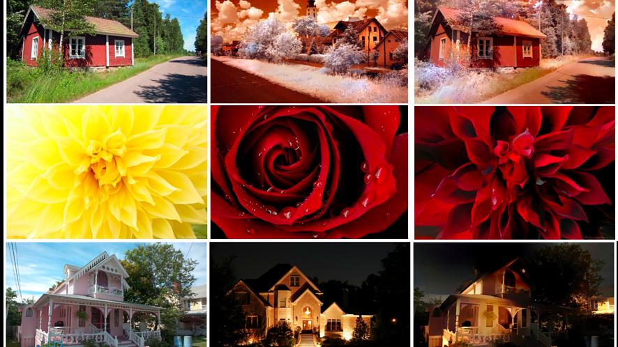 Chcesz odtworzyć styl profesjonalnych zdjęć? Można metodą kopiuj-wklej