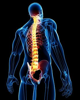 Dyskopatia, zwyrodnienie, wdowi garb - jak rozpoznać, że mamy do czynienia z chorobą kręgosłupa?