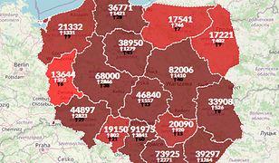 Koronawirus w Polsce. 24 051 nowych przypadków. Ponad 400 zgonów [Aktualna mapa zakażeń]