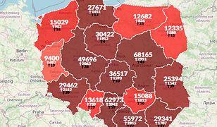 Koronawirus w Polsce. Rekord zgonów. Zmarło 445 osób [Aktualna mapa]
