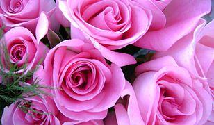 Kwiaty dla wszystkich mam w dniu ich święta: Dnia Matki