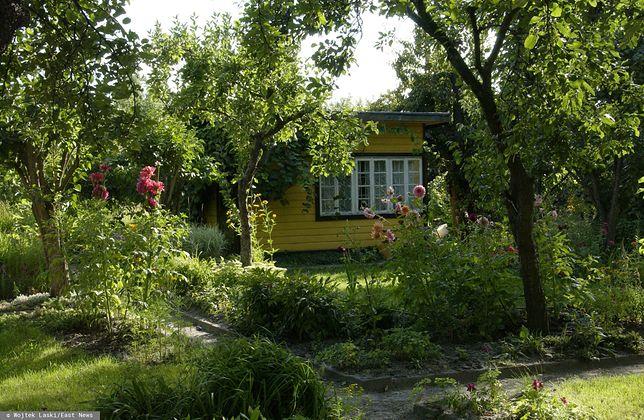 Szczygówek. 2 mężczyzn brutalnie zamordowało bezdomnego (zdj. ilustr.)