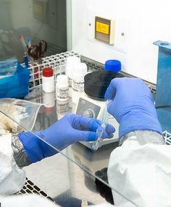 Koronawirus. Zidentyfikowano nowy, potencjalnie niebezpieczny wariant