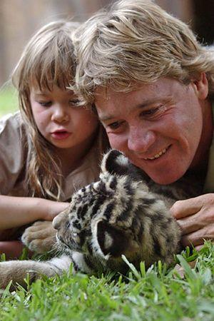 Łowca krokodyli, Steve Irwin, nie żyje
