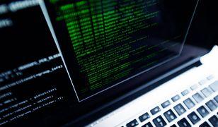 Joseph S. Nye: Koniec internetu to realne zagrożenie