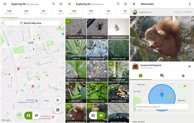 Obserwacje w iNaturalist w mojej okolicy