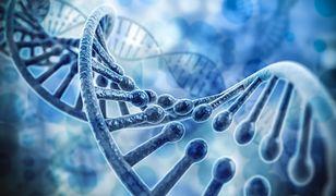 Naukowcy zidentyfikowali 102 geny związane z rozwojem spektrum autyzmu