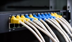UTP Cat5e Cable with patch panel