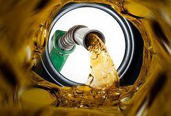 Podwyżki cen paliw na stacjach wyhamują?