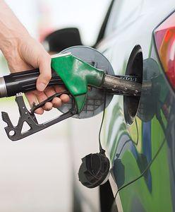 Ceny paliw na stacjach. Najnowszy raport