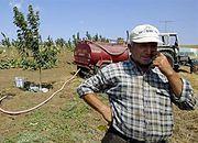 GUS: w Polsce jest 1 mln 583 tys. gospodarstw powyżej 1 hektara
