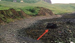 Wielkie odkrycie w Szkocji. Duży wkład naukowców z Polski