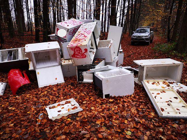 Szemud. W lesie znaleziono lodówki (Źródło: Fot. Zbigniew Klawikowski, Nadleśnictwo Gdańsk)