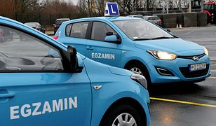 Przepisy o młodych kierowcach nie wejdą w życie w styczniu