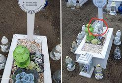 Okradł grób dzieciątka. Rozpaczliwy apel matki