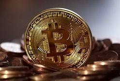 Walia. Wyrzucił dysk, na którym miał tysiące bitcoinów. Zwrócił się o pomoc do miasta
