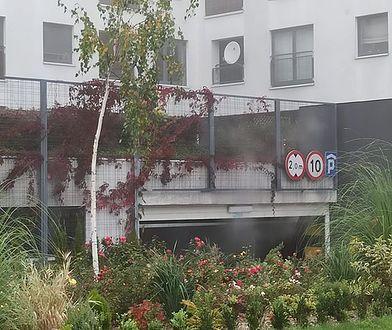 Warszawa. Po pożarze garażu nie mają gdzie mieszkać. Apel o pomoc