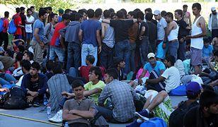 W Austrii, Niemczech i na Węgrzech zatrzymano przemytników ludzi. Przerzucili przez granicę ok. 1 tys. uchodźców