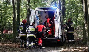 Konar spadł na 13-latka. Chłopiec w stanie ciężkim trafił do szpitala