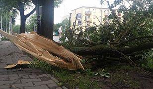 Po nawałnicy nad Wielkopolską - 1200 interwencji, 6 rannych osób