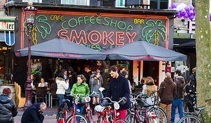 Z Amsterdamu znika coraz więcej popularnych coffee shopów