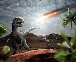 Zabił dinozaury. Niesamowite odkrycie naukowców