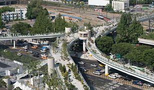 W miejscu dawnej autostrady powstają ogrody. To nowy pomysł władz Seulu