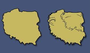Europejskie kraje widziane z innej perspektywy. Polska pokazana jako lwia głowa