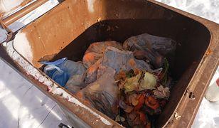 Jak segregować odpady? Na pewno nie wrzucając foliowe torebki do pojemników na bioodpady