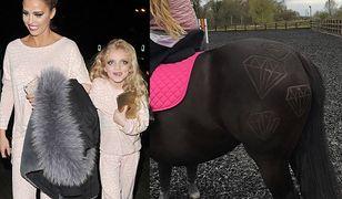 Katie Price wycina wzory na swoich koniach. Tym razem przesadziła?