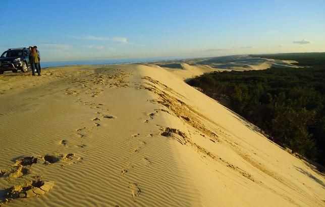 Plaża Stockton, Australia - te plaże ciągną się kilometrami