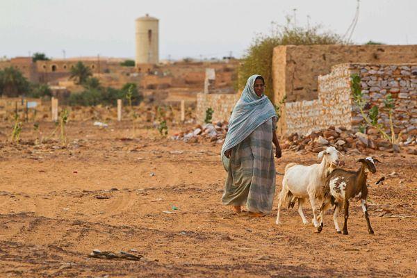 Mauretańscy ulemowie ogłosili fatwę przeciwko niewolnictwu